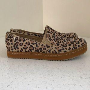 Women's Toms Palma Suede Leopard Print
